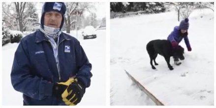 Pludseligt gik hunden ikke længere postbuddet i møde – Hvad postbuddet så gør er dybt chokerende og hjertevarmende!