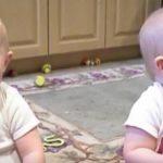 Babyerne sidder og leger – vent nu og se da de hører deres far.