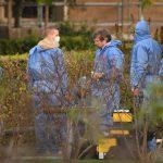 Nu er der nyt i sagen om nedgravet spædbarn: Politiet efterlyser nu en ung kvinde med mørkt krøllet hår.