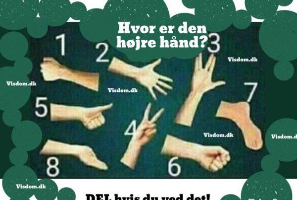 Hvor er den højre hånd? - DEL hvis du ved det!