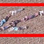 Børnene skynder sig ned på jorden – da politiet indser hvorfor fuldføres missionen
