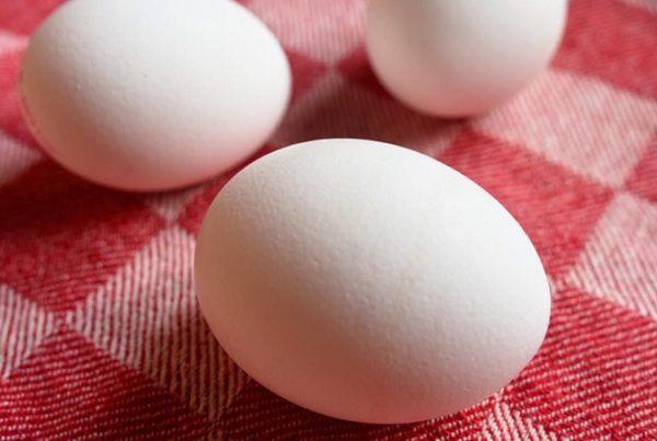 Husmortrick: Sådan finder du ud af om dine æg er dårlige