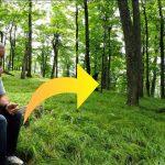 Han sidder roligt alene i skoven og spiser et æble – så får han en usædvanlig oplevelse for livet!