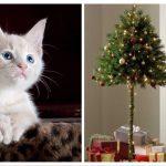 """Nyhed til ejere med legesyge katte: Nu er det """"halve"""" juletræ endelig kommet på markedet!"""