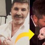 Dyrehelten Simon Cowell giver 200.000 kroner – for at stoppe handlen med hundekød i verden!