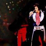 Elvis Stillede sig på scenen kort før sin død: Mærk gåsehuden når han åbner munden og afslører sangvalget