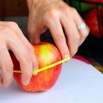 Forlæng holdbarheden på dine madvare med dette smarte trick!