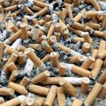 Skræmmende undersøgelse: Danskerne smider 9 millioner cigaretskodder om dagen – se de farlige konsekvenser her!
