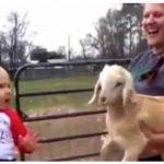 Barn og gedekid introduceres for hinanden for første gang – Hvad der sker er hysterisk morsomt.