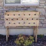 Genial ide – Hun borer 19 huller i en plantekasse, se det utrolige resultat 5 måneder senere.