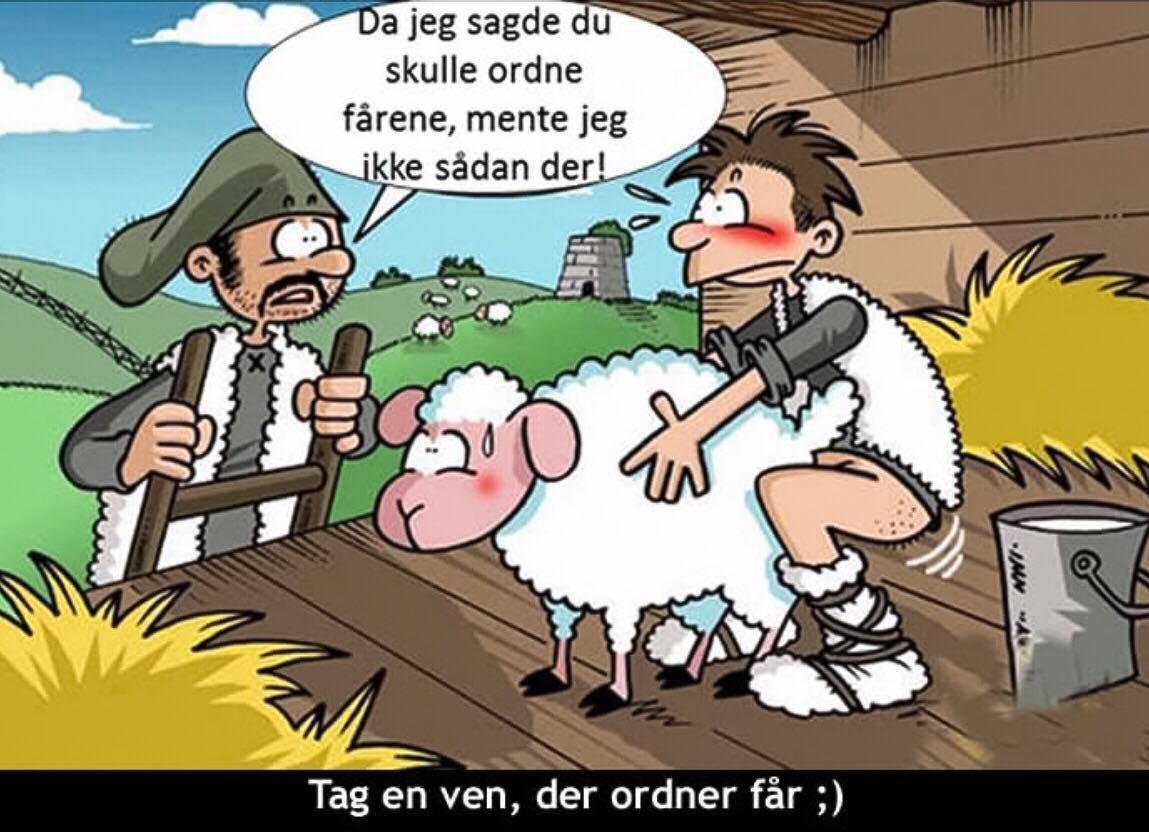 Da jeg sagde du skulle ordne fårene mente jeg ikke sådan der