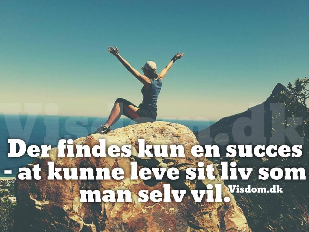 succes citater succes   Danmarks største citater om succes finder du på visdom.dk succes citater