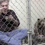 Dyrlægen låser sig inde med den misrøgte hund – men se nu hvor han spiser af skålen