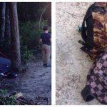 Far og søn var på campingtur alene i det fri – pludseligt skulle de opleve noget, der ændrede hele deres tur.