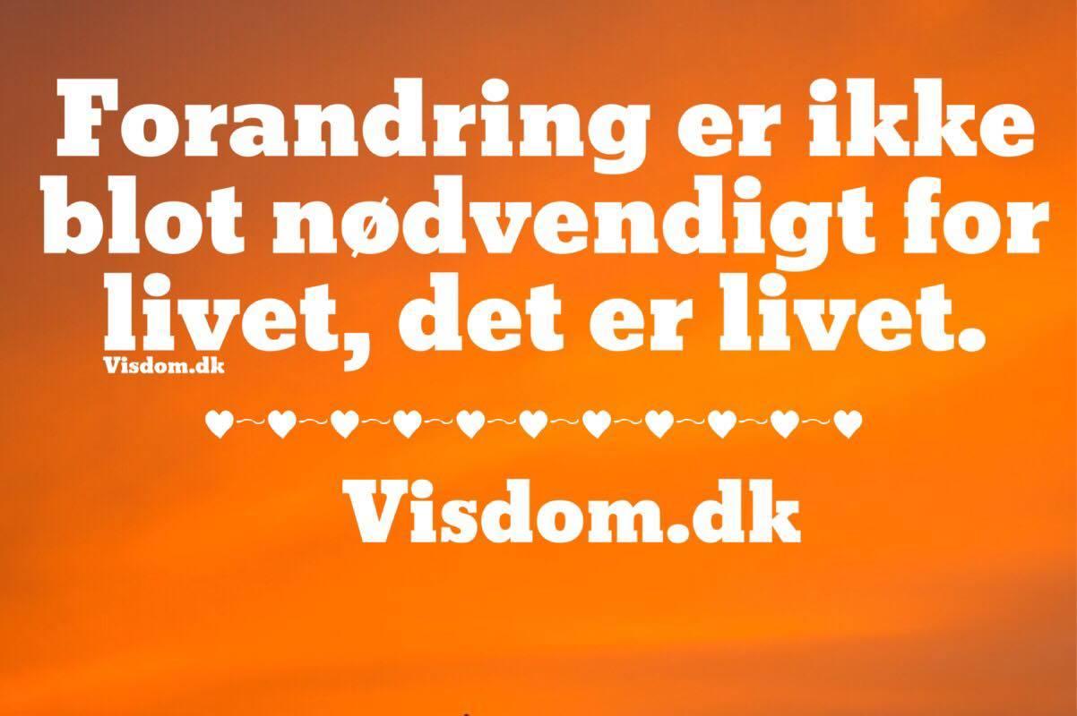 citater om forandring Forandring   Danmarks bedste citater til dig som elsker livet og  citater om forandring