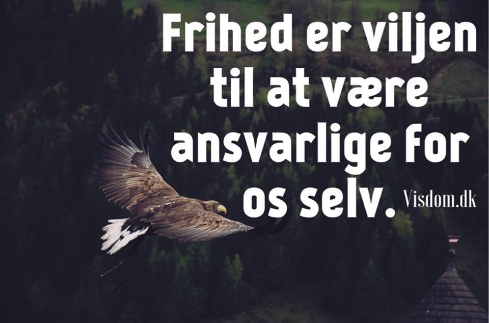 frihed citater frihed   Vi har samlet de største citater 1 sted nemlig på visdom.dk frihed citater