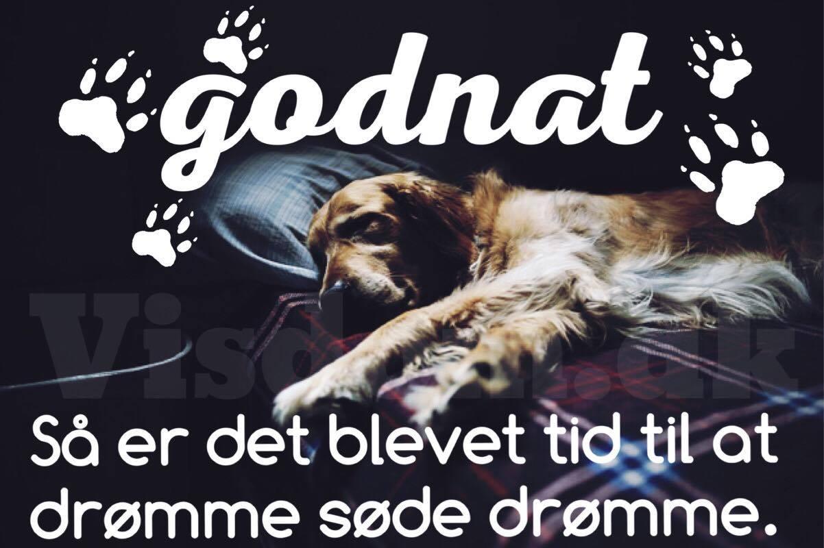 søde godnat citater Godnat   Søde danske citater, ordsprog på dansk, Visdom.dk søde godnat citater