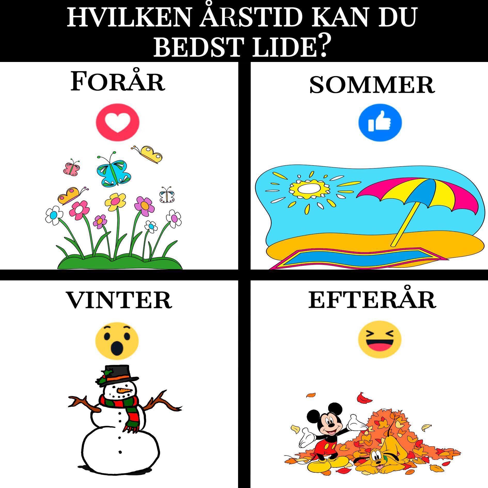 Hvilken årstid kan du bedst lide