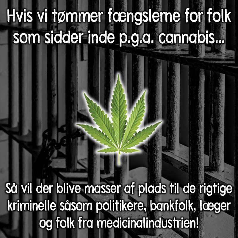 citater om kriminalitet fængslerne   Danmarks bedste billeder på dansk, Budskaber citater om kriminalitet