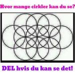 Hvor mange cirkler kan du se?