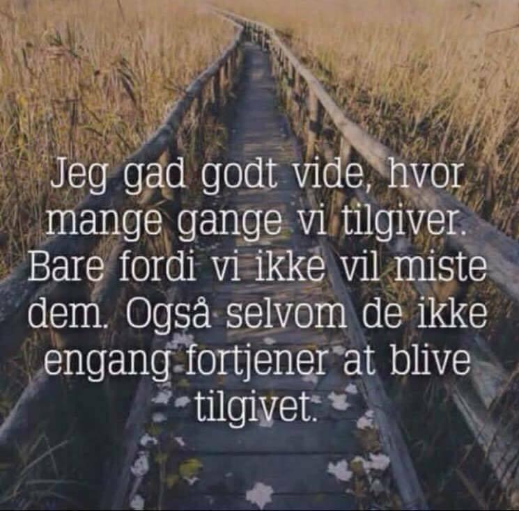 citater om mistet venskab tilgiver   Danmarks smukkeste citater, ordsprog og digte. citater om mistet venskab