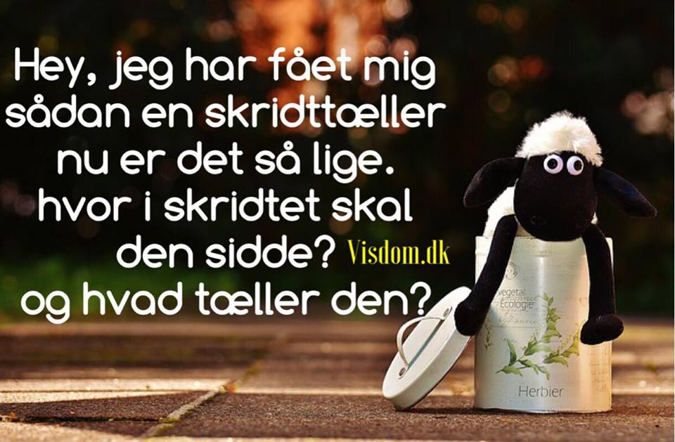dagens sjove citat skridttæller   Danmarks sjoveste citater, dagens humor. dagens sjove citat