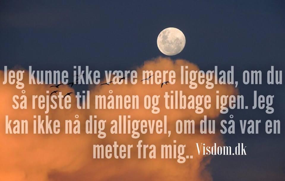citater om sorg og død Dig   Nordens Største Ordsprog inde for Familie, Sorg, Kærlighed mm. citater om sorg og død