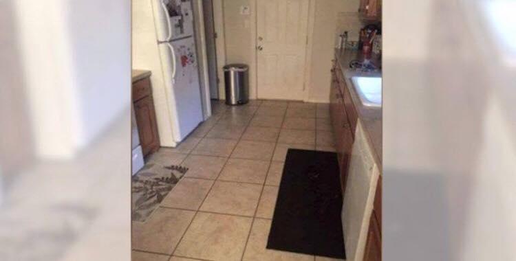 Kan du finde hunden på billedet? - mange har prøvet, men kun få har fundet den!
