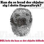 Kan du se hvad der skjuler sig i dette fingeraftryk?