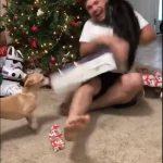 Jaloux kat angriber ejer..