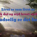 Livet er som livet er..