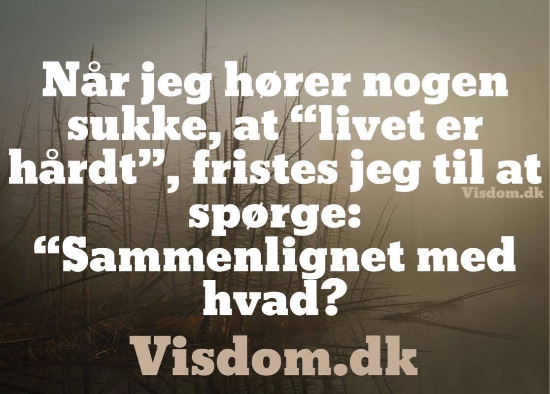 citat livet er hårdt sammenlig  Danmarks smukkeste citater, Citater om kærlighed og  citat livet er hårdt