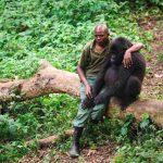 Parkvagten valgte at sætte sig ved siden af gorillaen der netop har mistet sin mor – Se nu den smukke og rørende reaktion