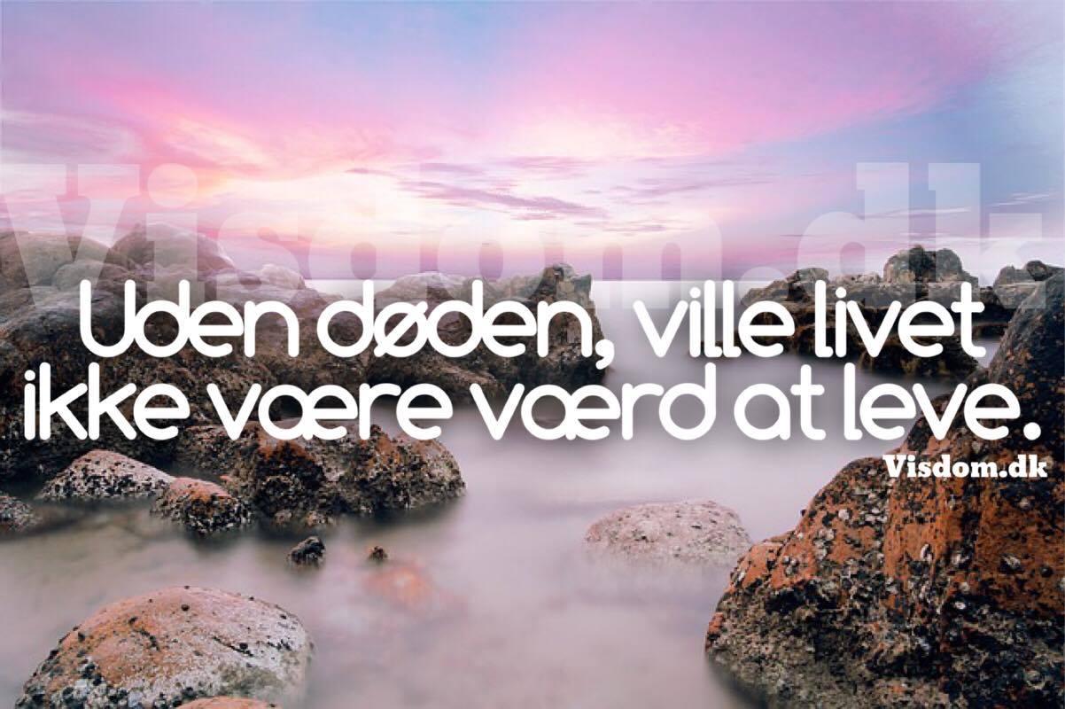citater om døden og livet livet   Danmarks største citat side finder du online på visdom.dk citater om døden og livet