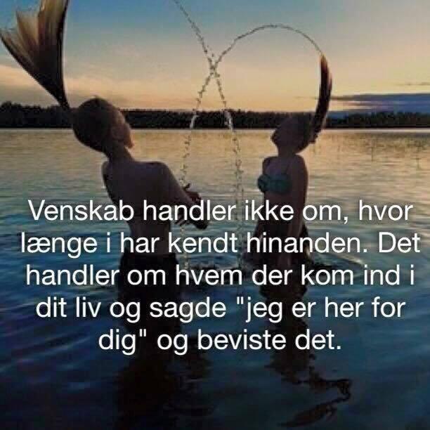 venskab citater dansk venskab   top citater på dansk og engelsk find din inspiration  venskab citater dansk