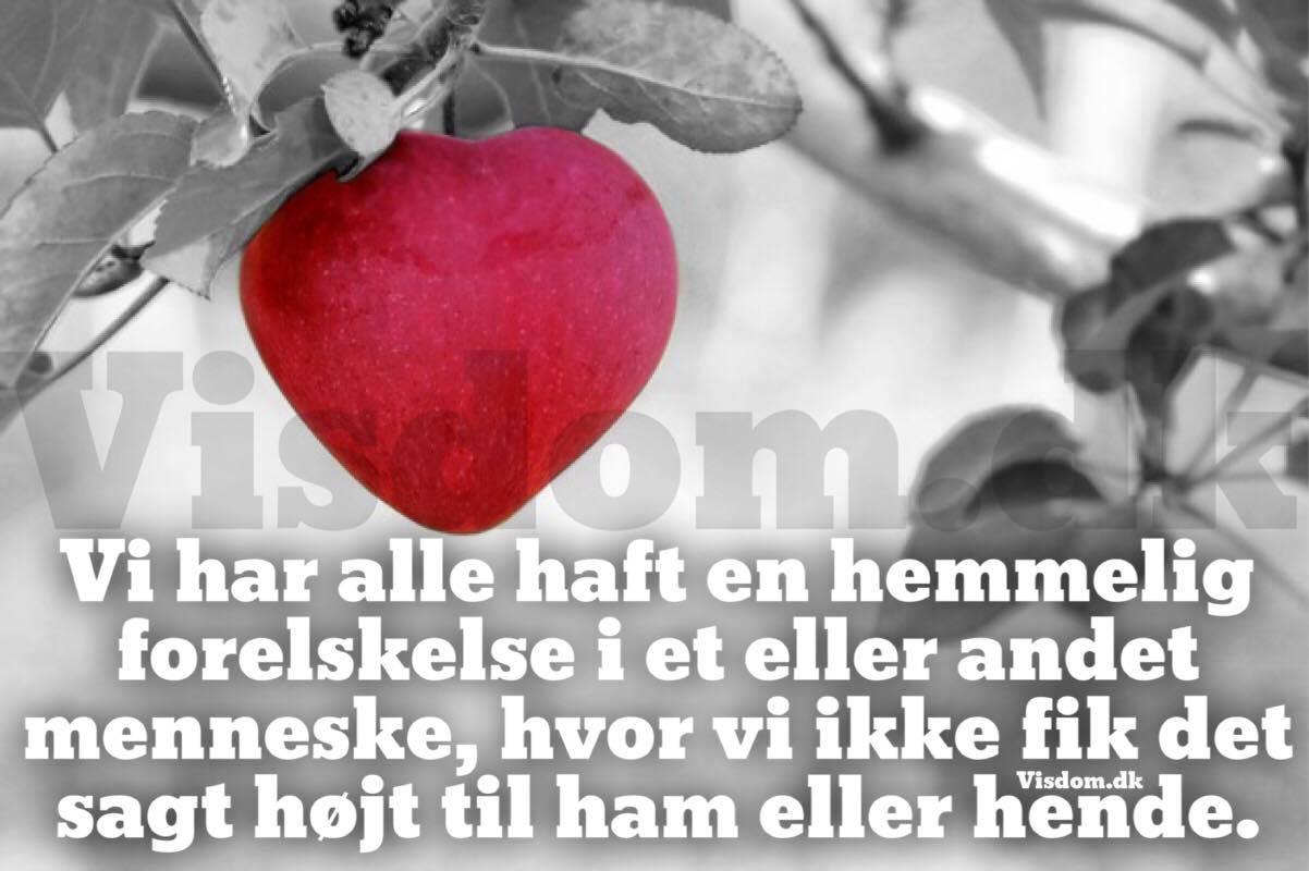 3b6b2ab0925 hemmelig - Danmarks sødeste citater, Kærligheds citater, citater om ...