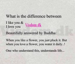 what is the difference..