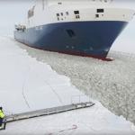 Stig om bord på et sejlende fragtskib: Videoen her har fået millioner på nettet til at måbe!