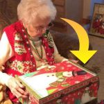 Bedstemoren åbner sin julegave fra familien – hun får sit livs overraskelse, da hun ser hvad pakken indeholder